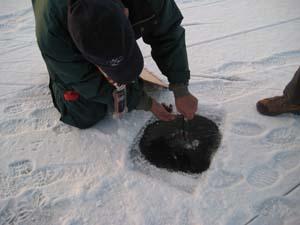 2010-westeinder-winter-11