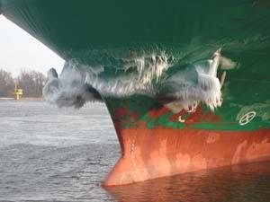 2011-ek-saarema-estland-ijsbaard